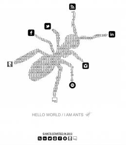 www.antsworld.net
